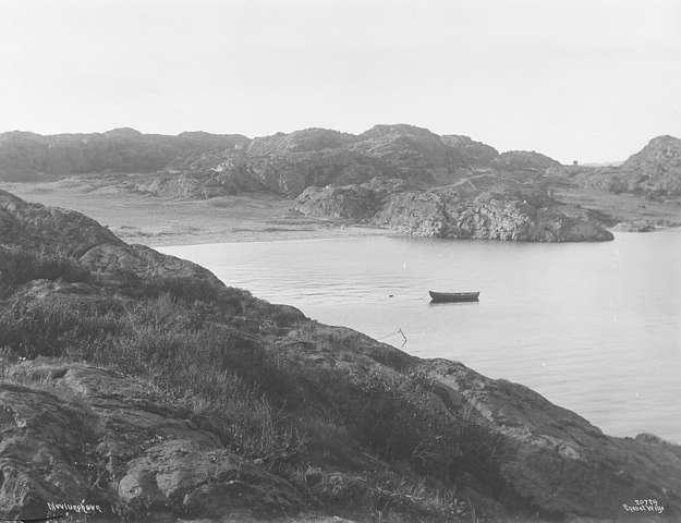 1919 (1).jpg