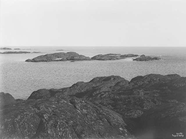 1919 (3).jpg