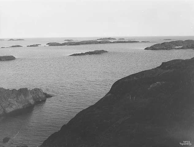 1919 (4).jpg