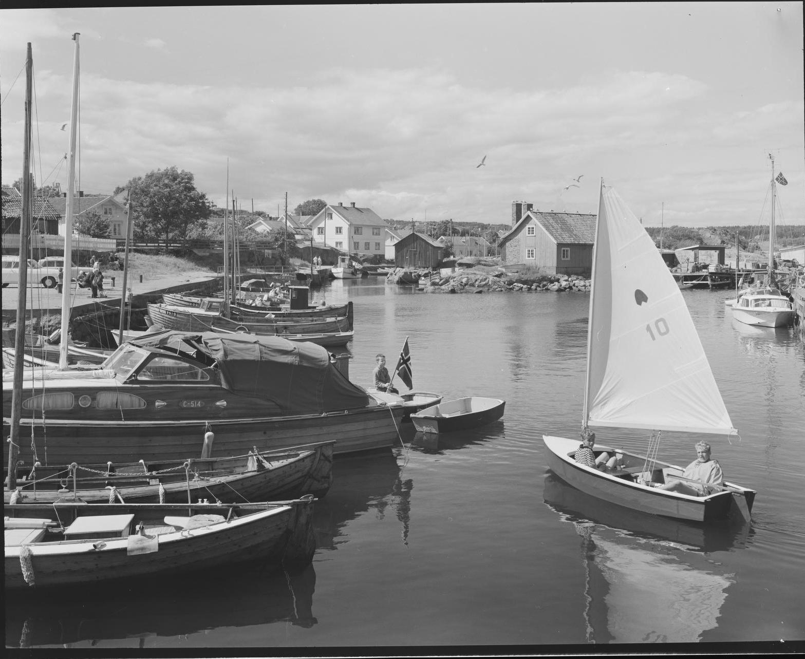 """""""Nevlunghavn"""" 1964"""