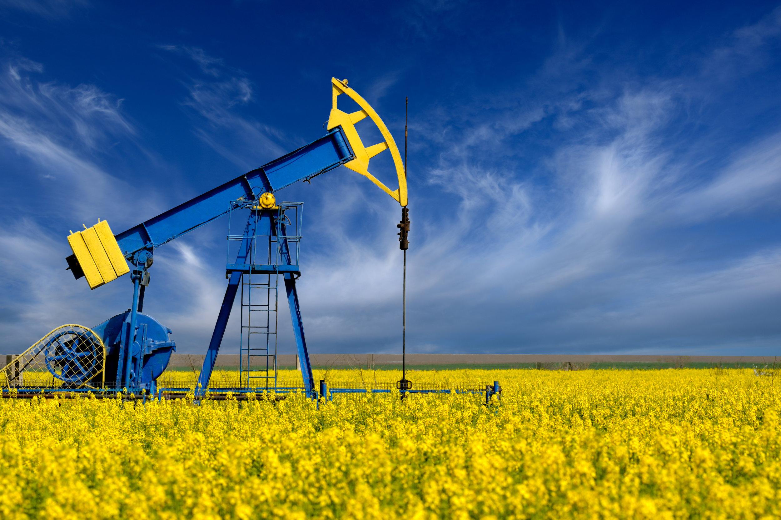 Oil pump and flowersshutterstock_443792287.jpg