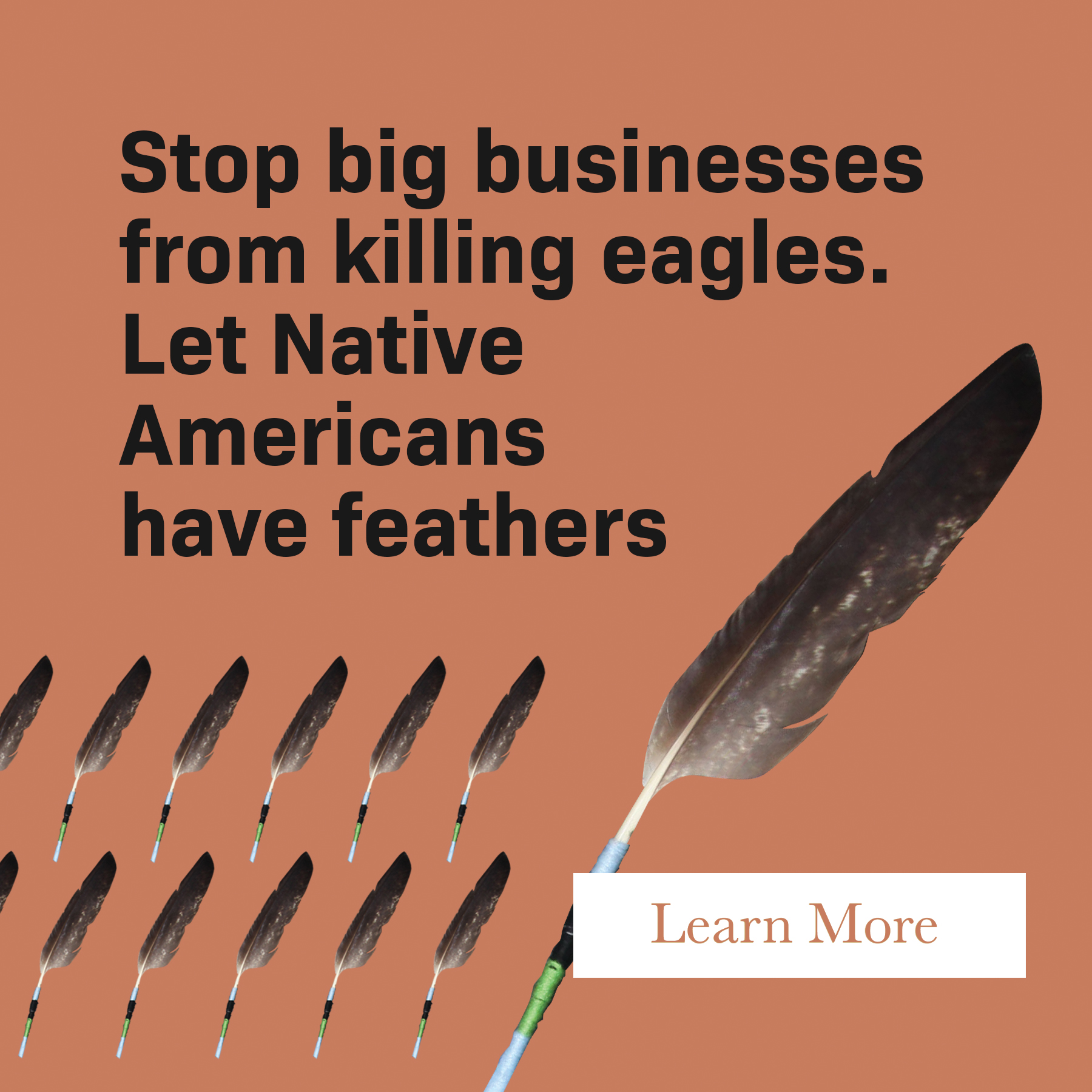 Let Native Americans have feathers