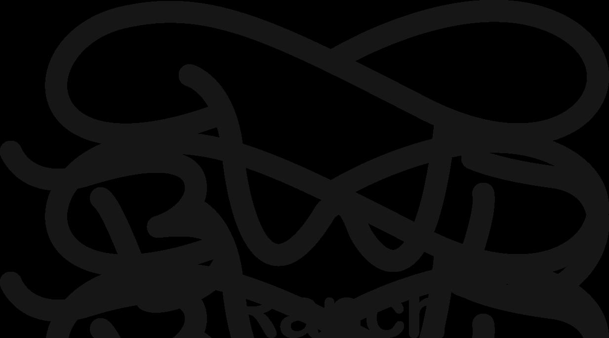 BWD ranch logo.png