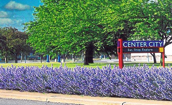 Spring Time at Center City 2.jpg