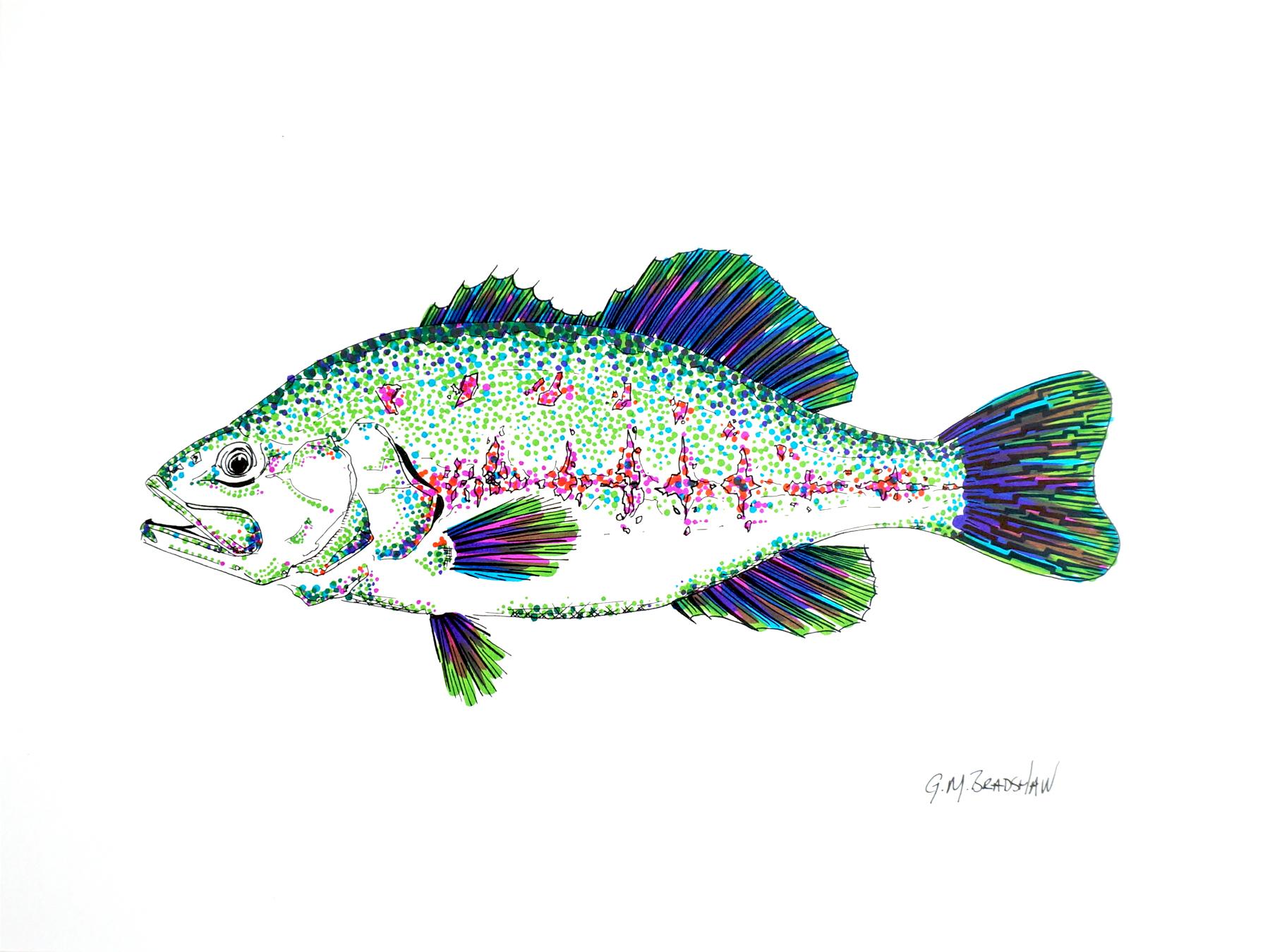 Bass-color.jpg