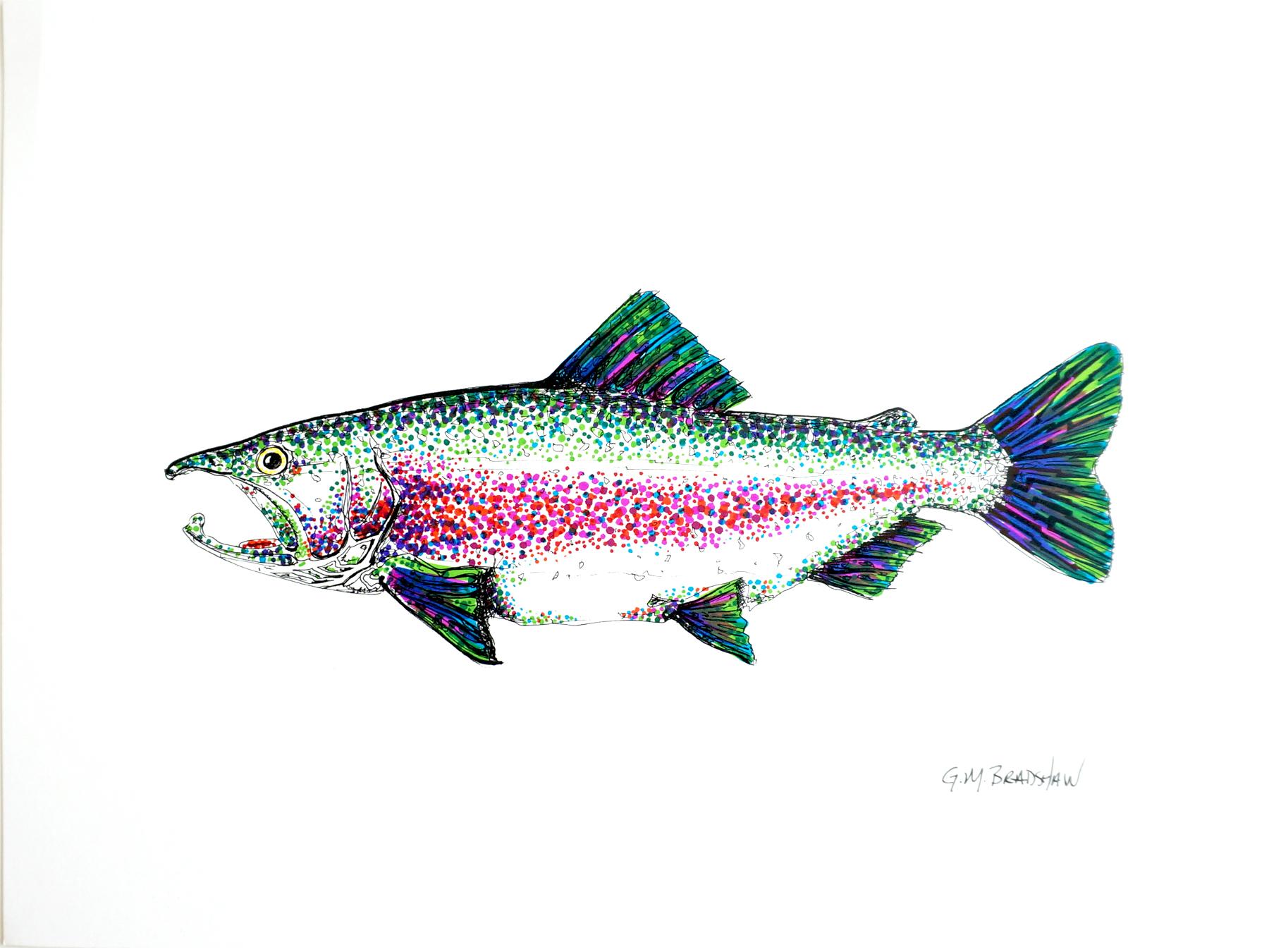 trout-color.jpg