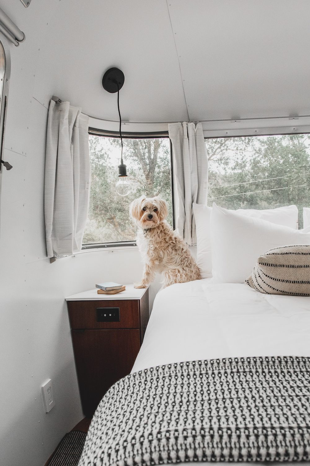 Autocamp Yosemite Pet-Friendly Airstream | Cedar + Surf