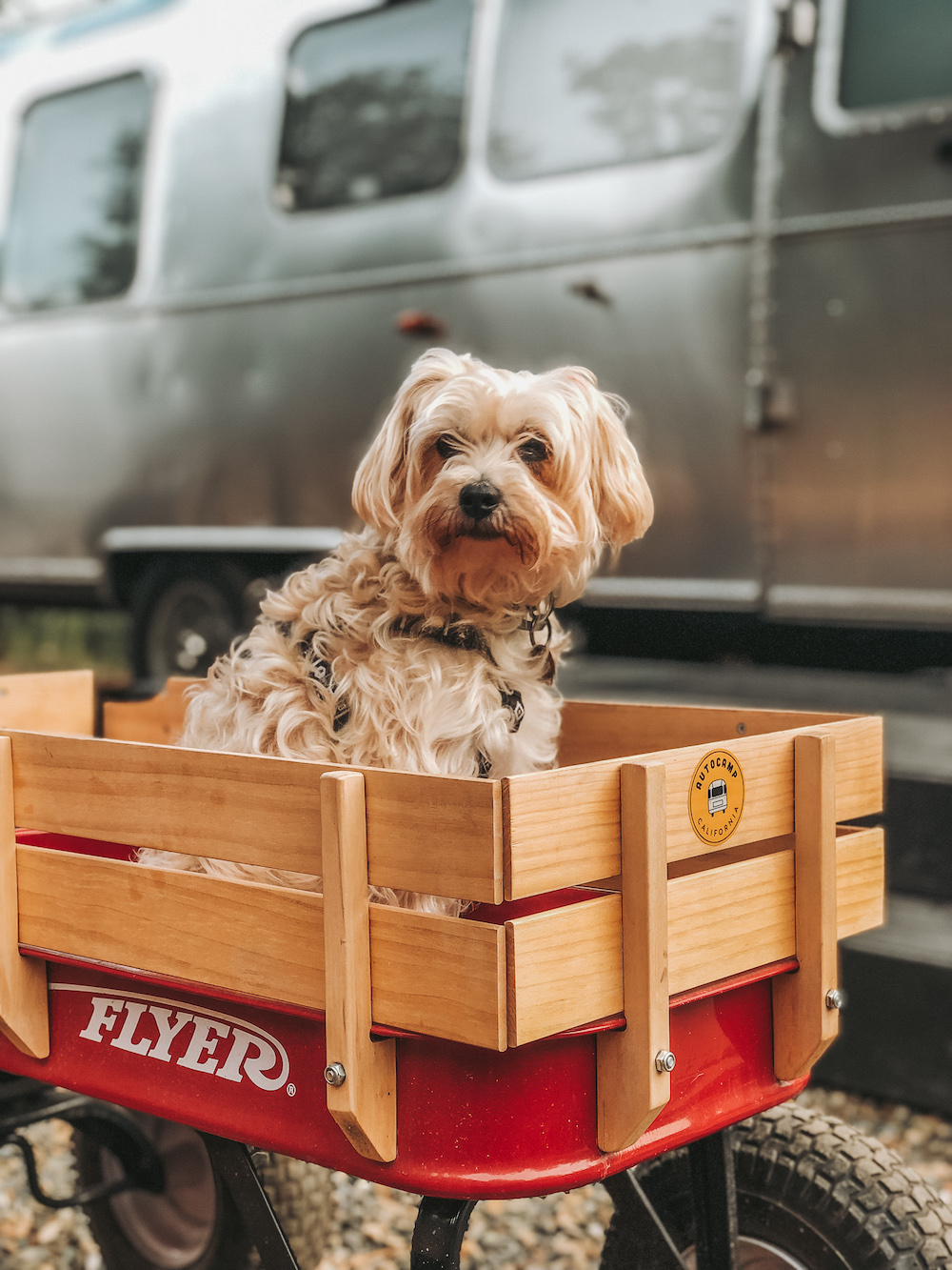 Radio Flyer Wagon Autocamp Yosemite | Cedar + Surf
