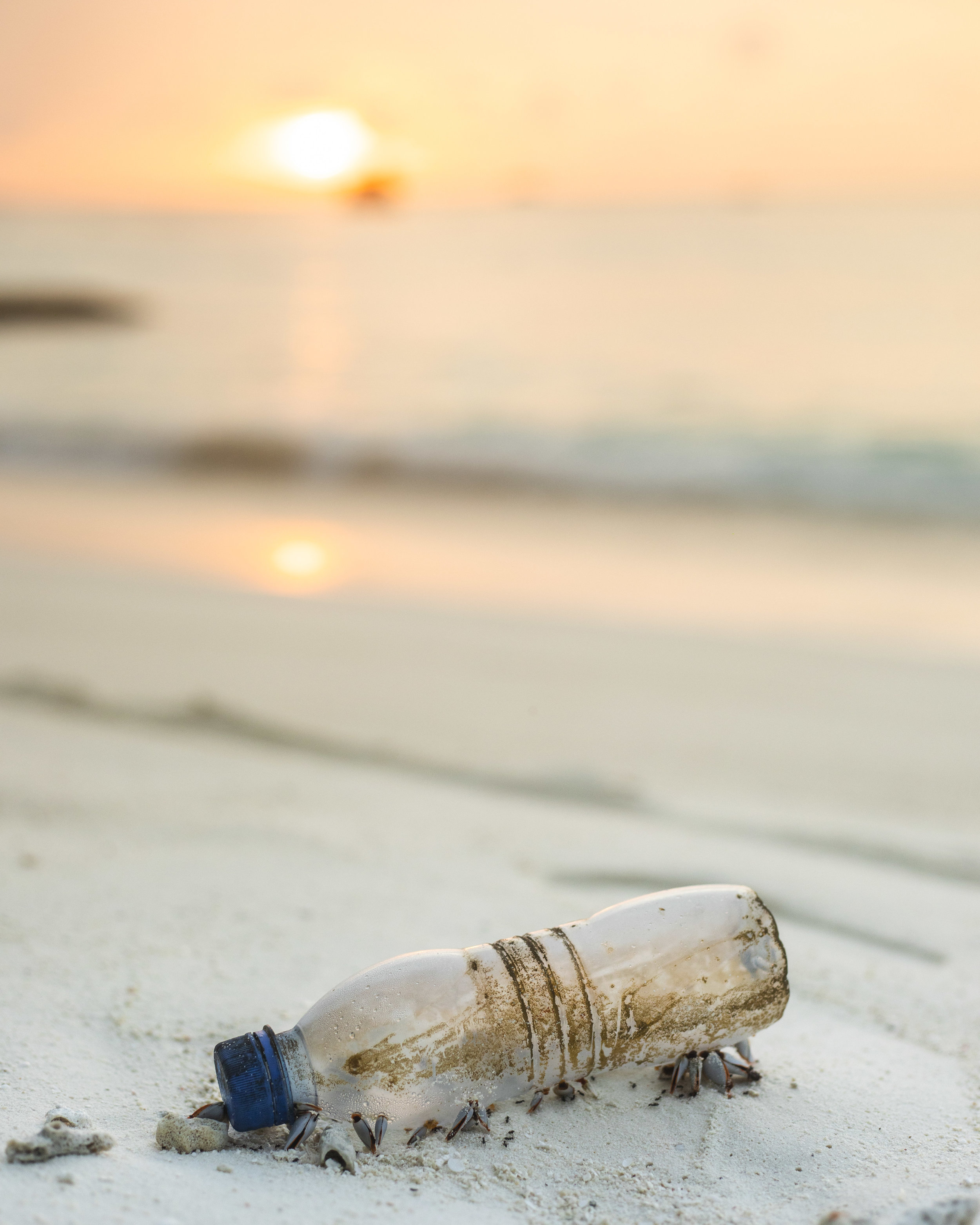 Plastic bottle on the beach | Cedar + Surf