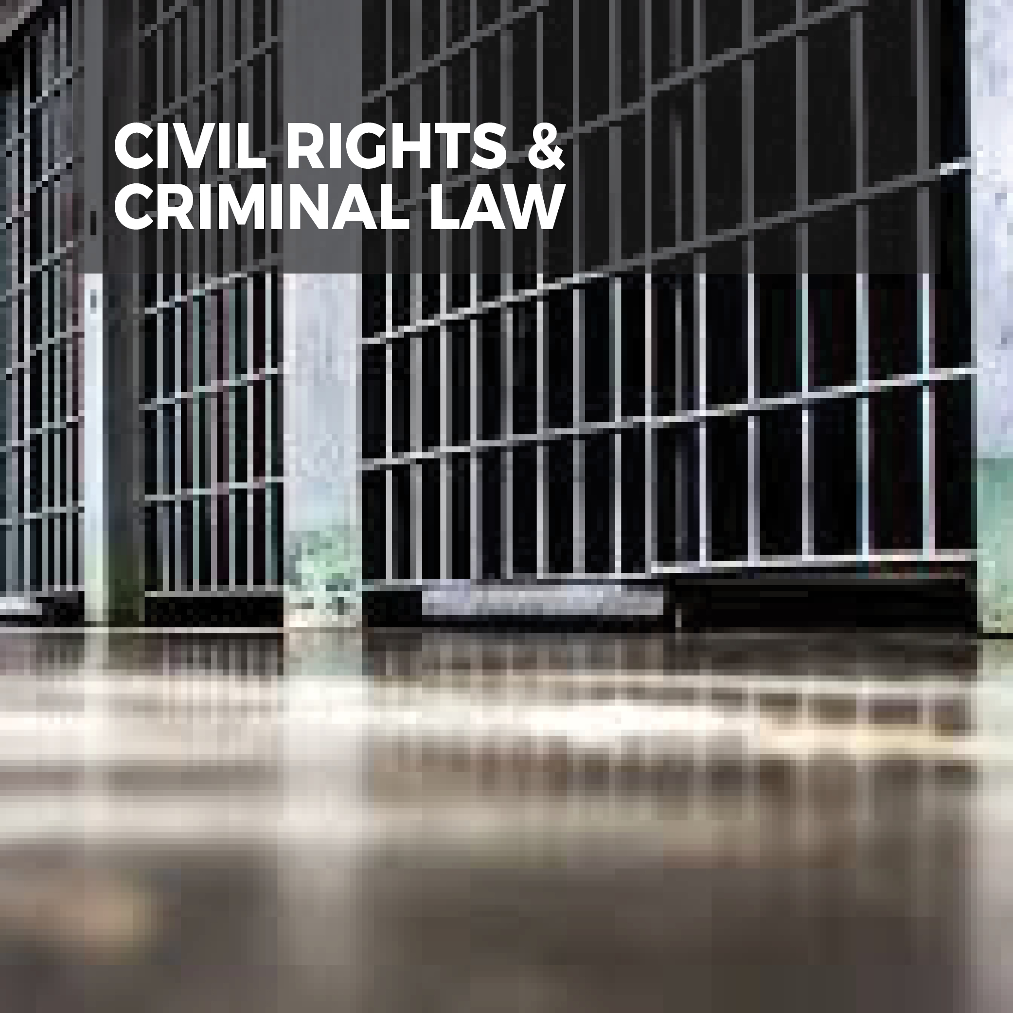Civil Rights & Criminal Law