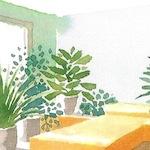 bedroomplants_closeup.jpg