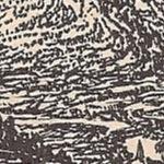 mountain in Benet book.1.jpg