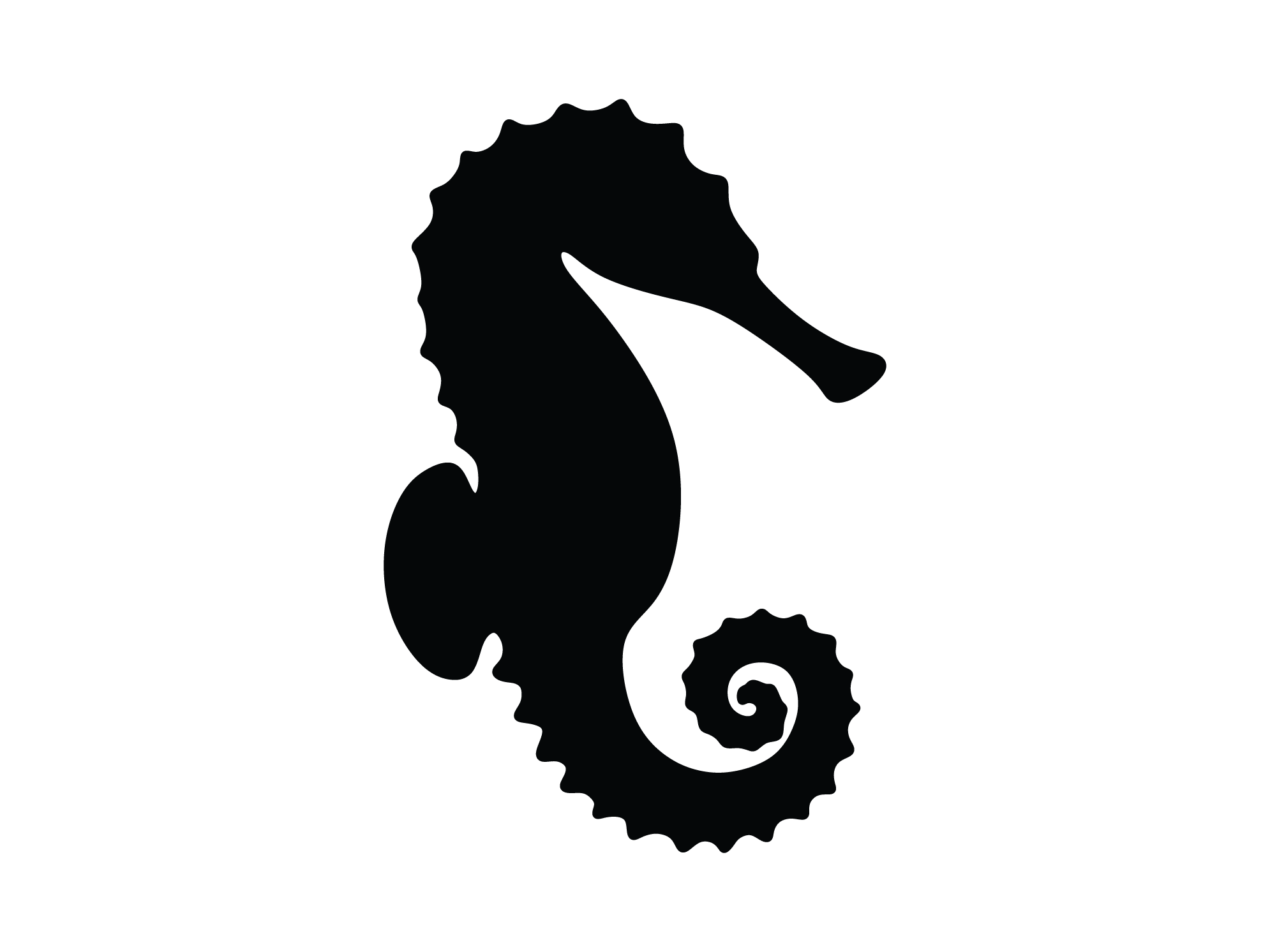 seahorse-01.png