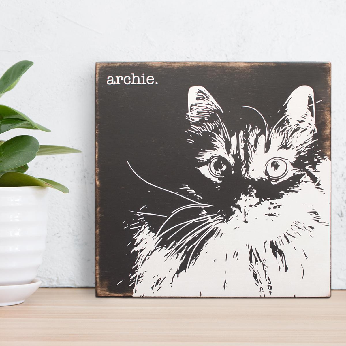 archie_cat.jpg