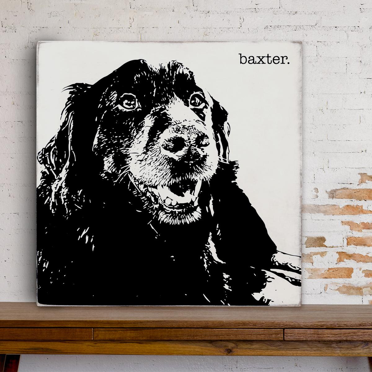 BaxterPortrait.jpg