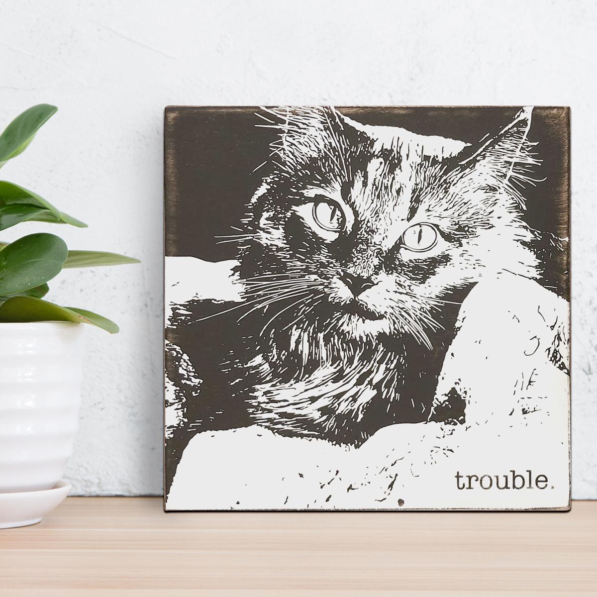trouble_portrait.jpg