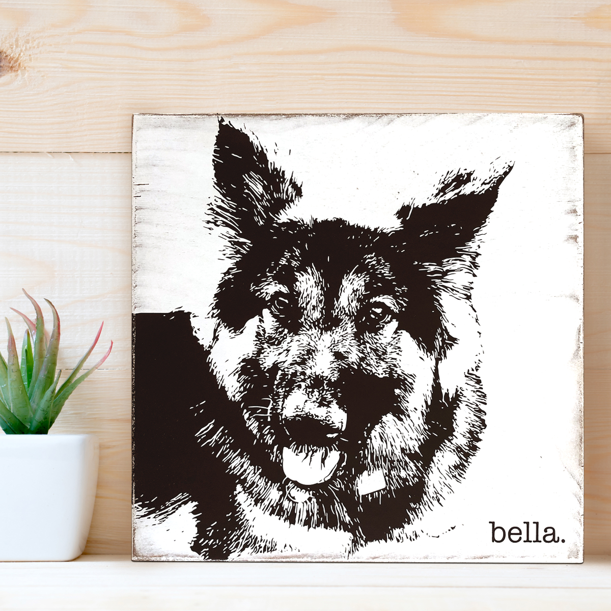 bella_portrait.jpg