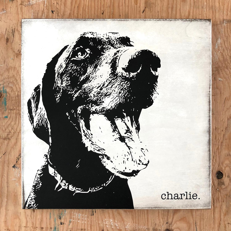 charlie.jpg