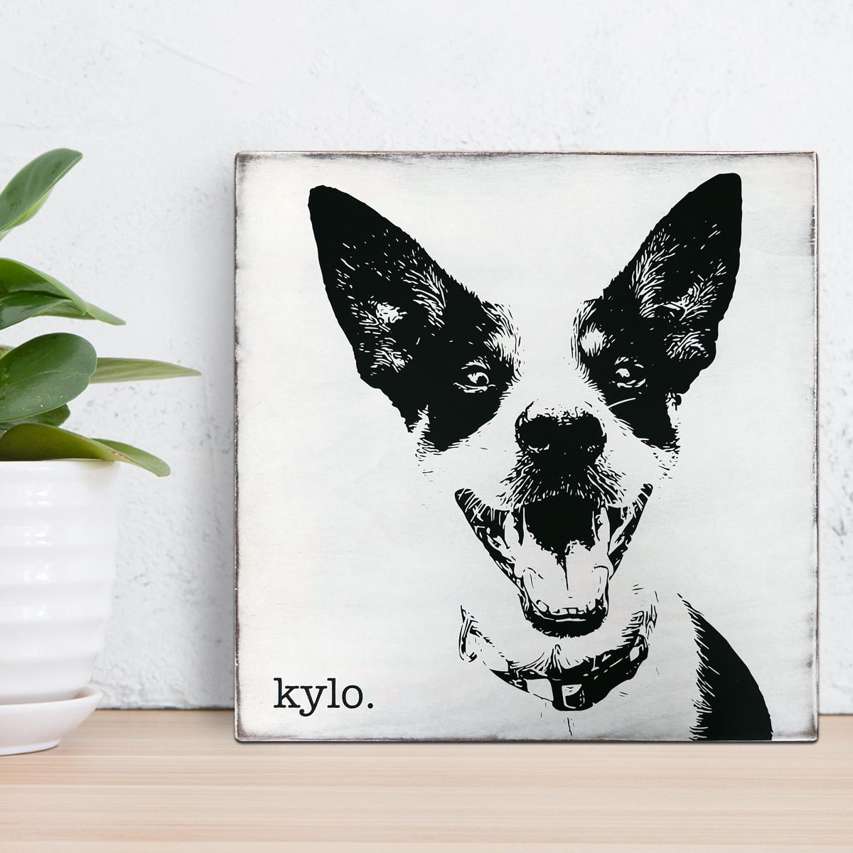 KyloPortrait.jpg