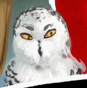 Digital painting of Freyja the snowy owl
