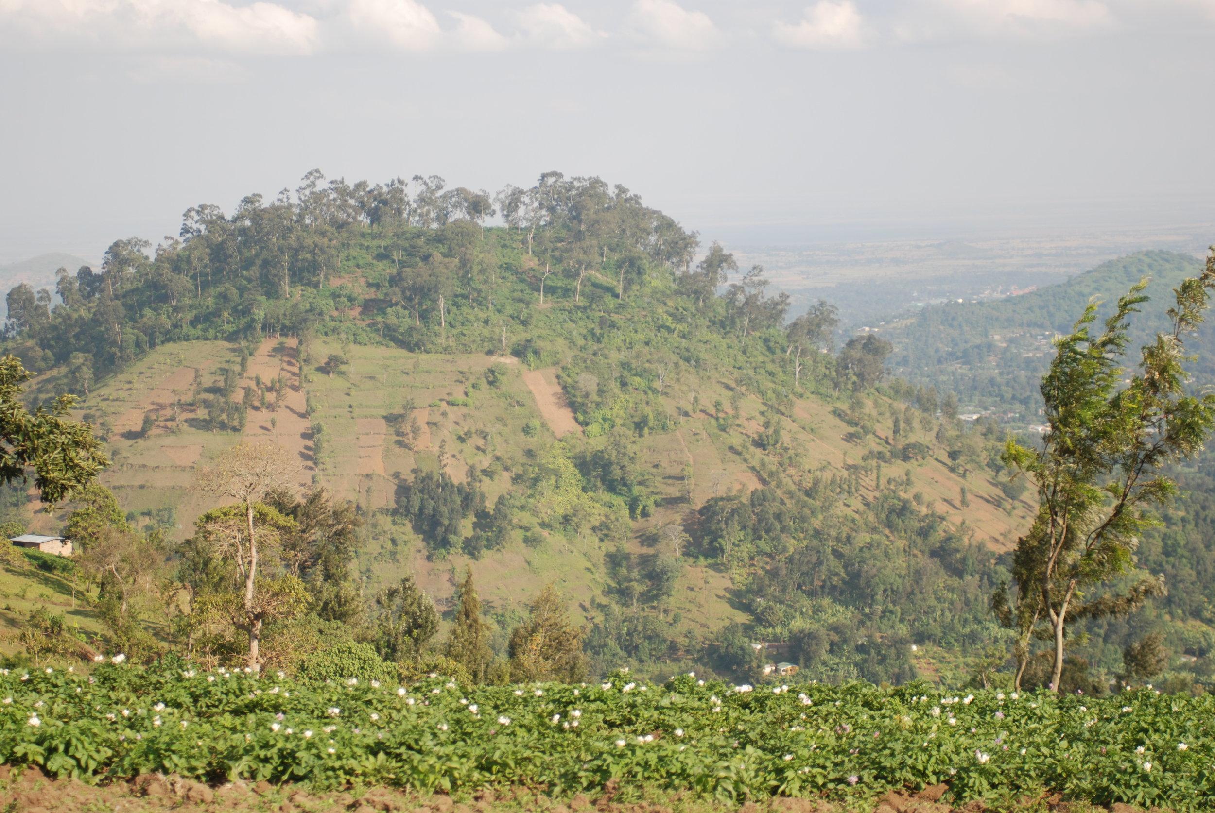 Tanzania 3 July '08 347.JPG