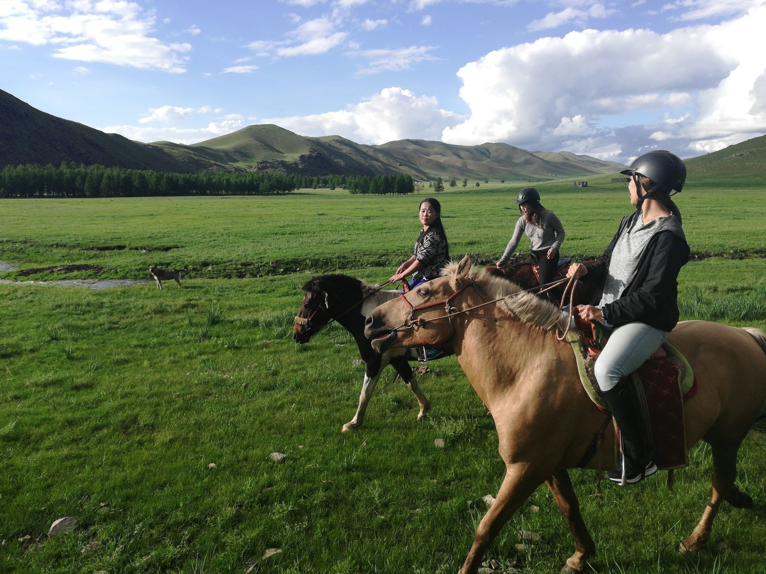 Do you love the outdoors?Do you love horses?Do you crave adventure? -