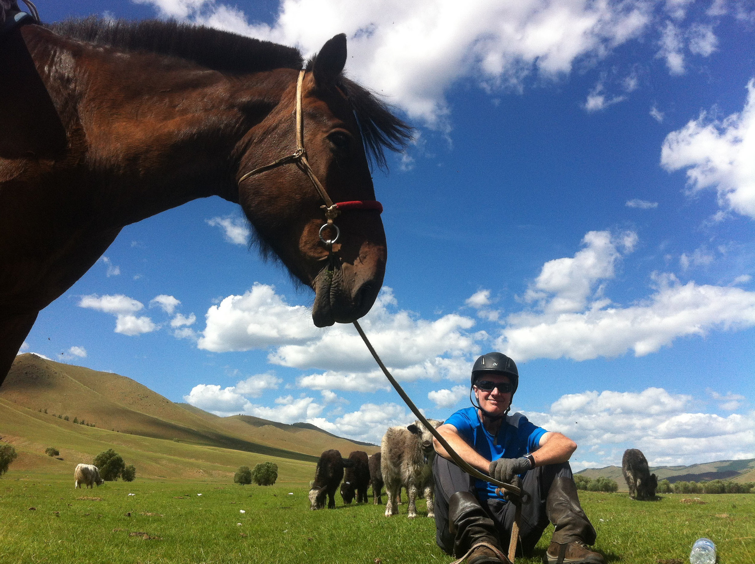 Be prepared by our horsemaster and rent a horse from us to ride wherever you desire -