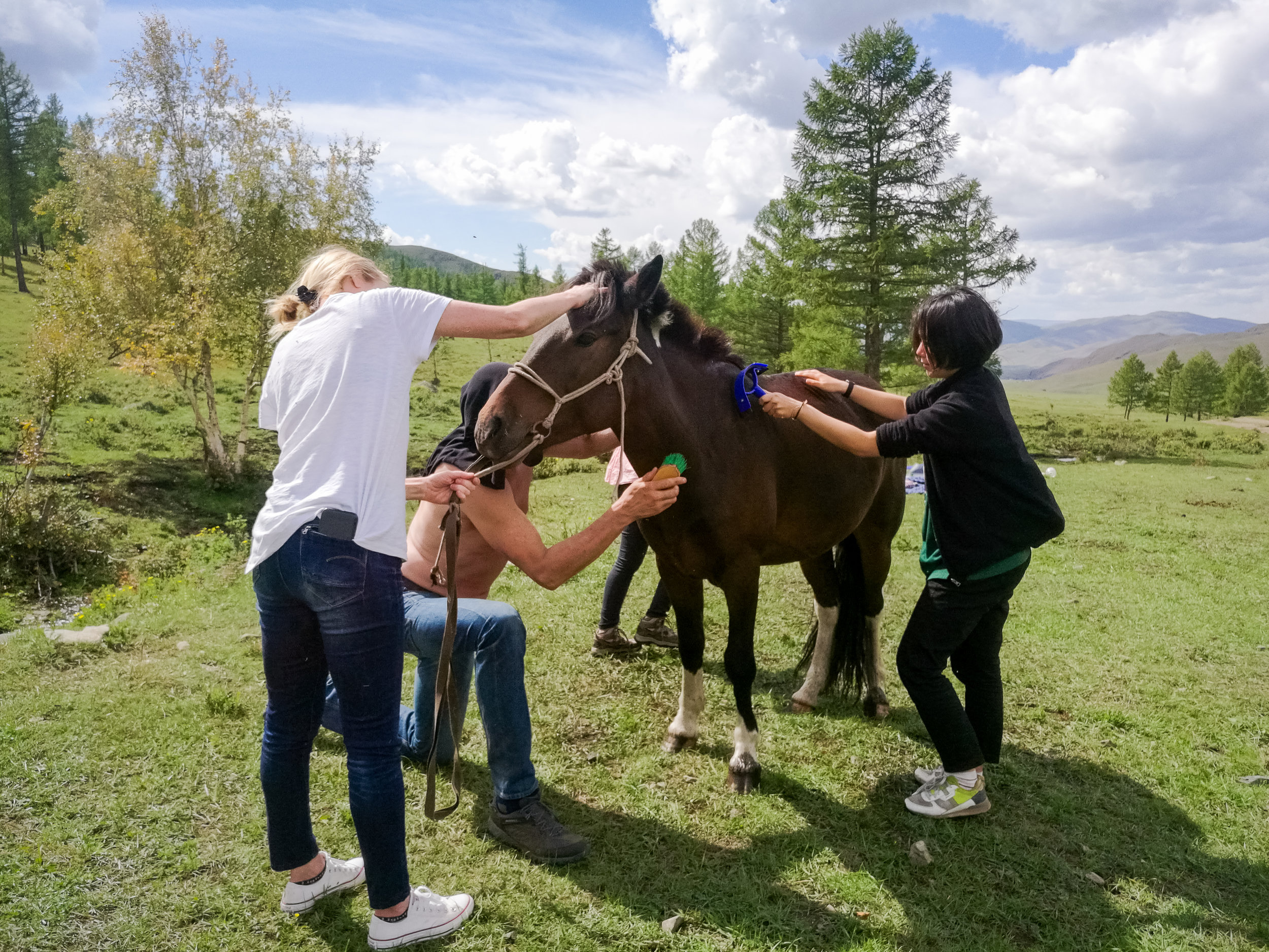 Learn to ride horses like a Mongolian - Get to know a breed of horse that has existed for hundreds of years