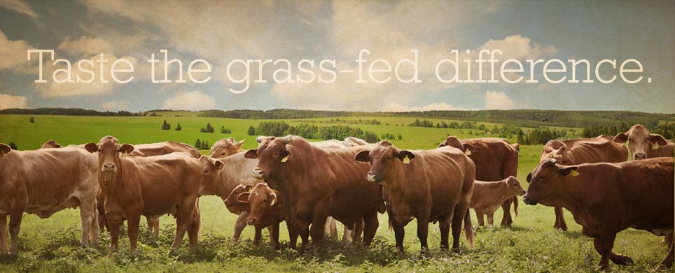 The Palto Grass-fed beef