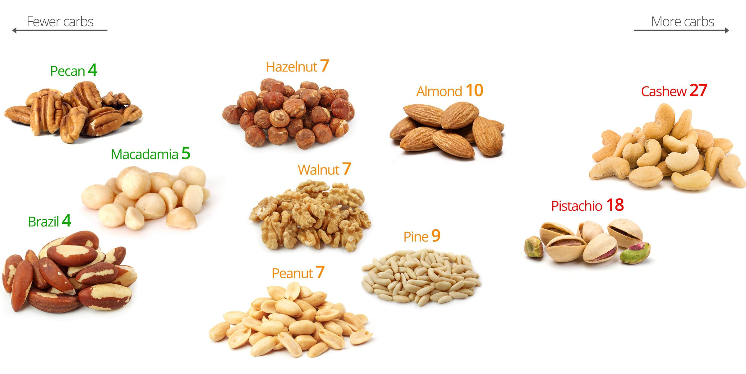 The Palto–Nuts4.jpg