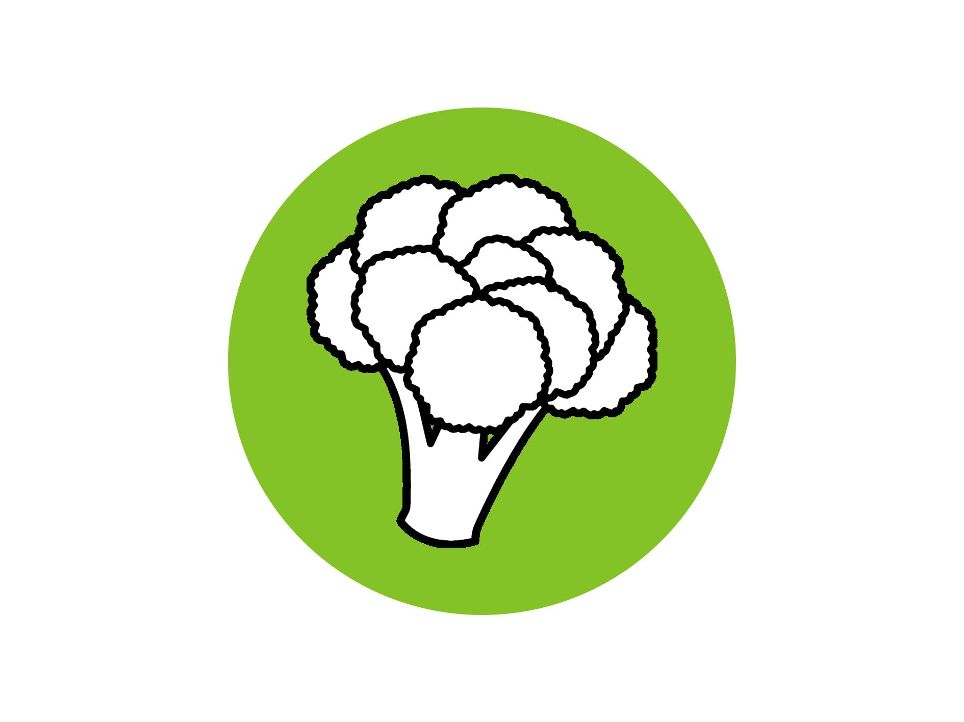 The Palto Broccoli Clipart.png