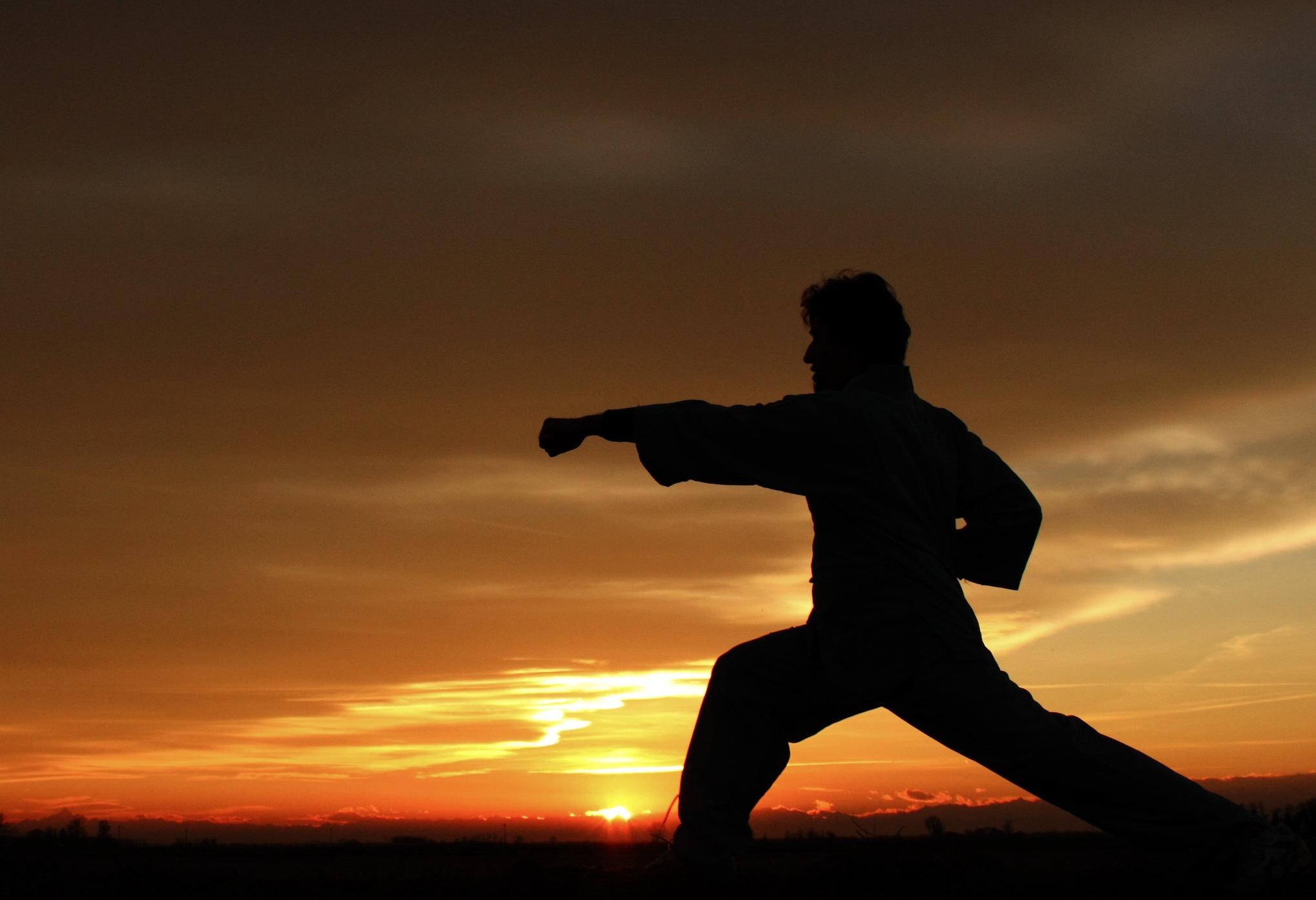 Goshin Taï So - Discipline qui reprend les techniques d'échauffement du corps, d'assouplissement…