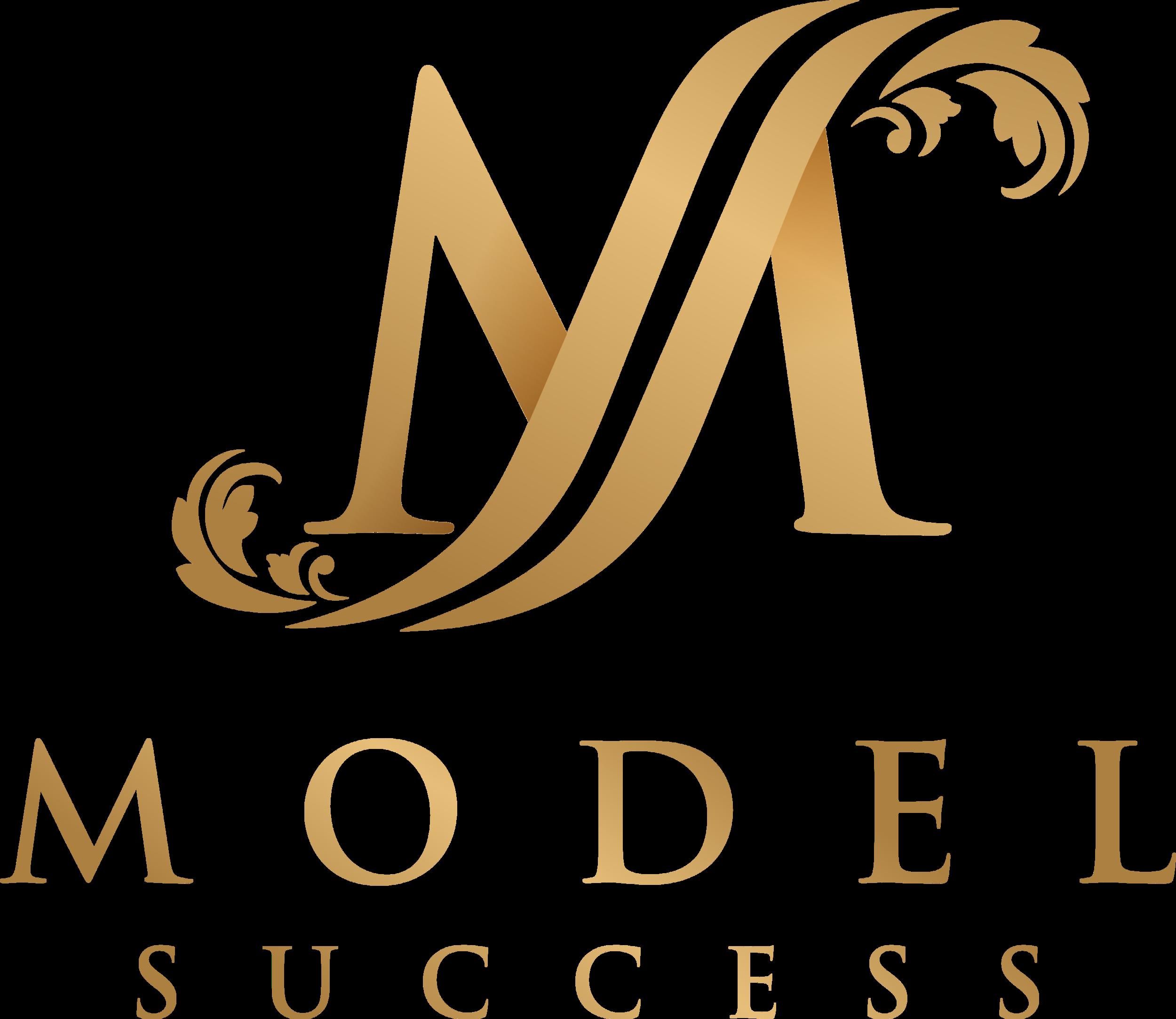 Model Succes