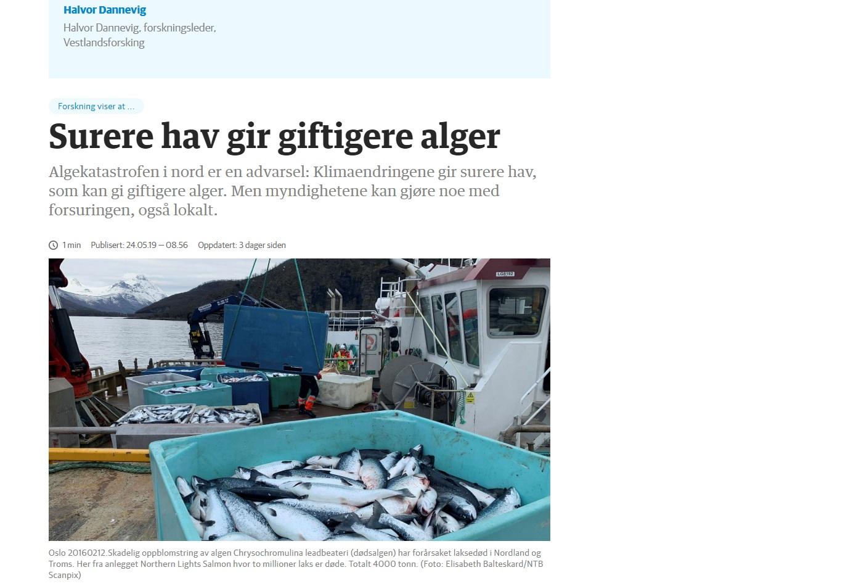 Skjermpdump av forskingskronikken frå Dagens Næringsliv 25.5. 2019.