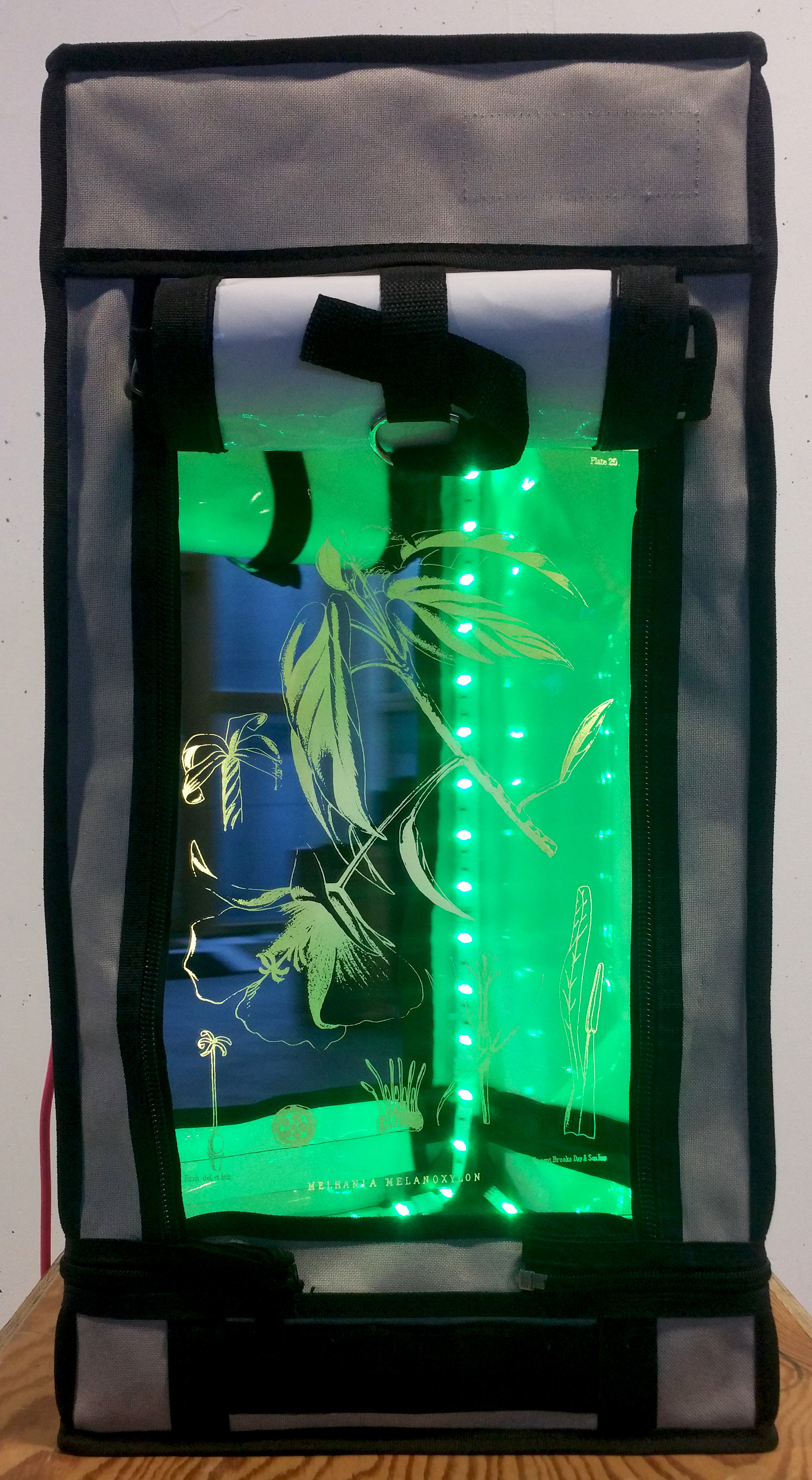 Alan Butler  DWARF EBONY (2017)Grow tent, LED, laser etched mirror, motor, pink fabriccable [length may vary] 61 x 31 x 31 cm