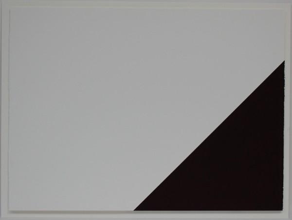 Fergus Martin.jpg