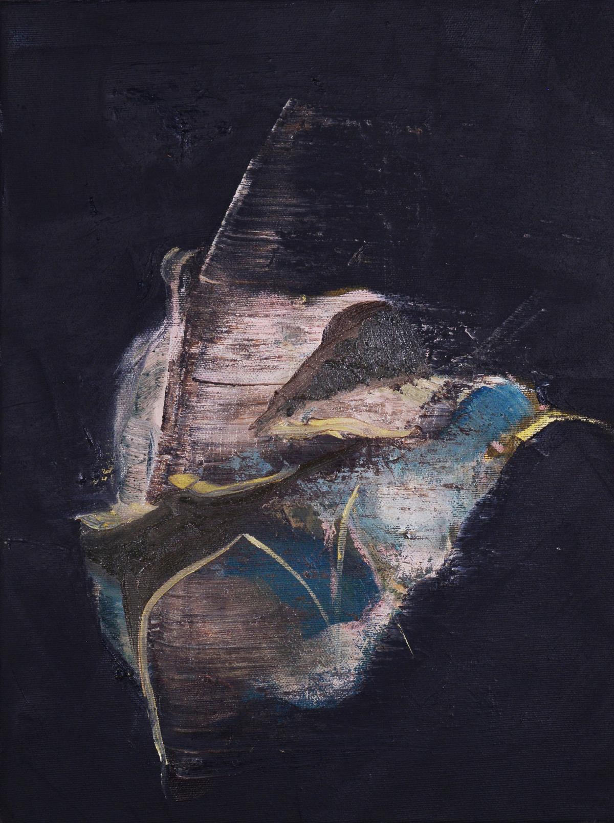 Flight, 2013, Oil on reversed black primed canvas, 40 x 30 cm