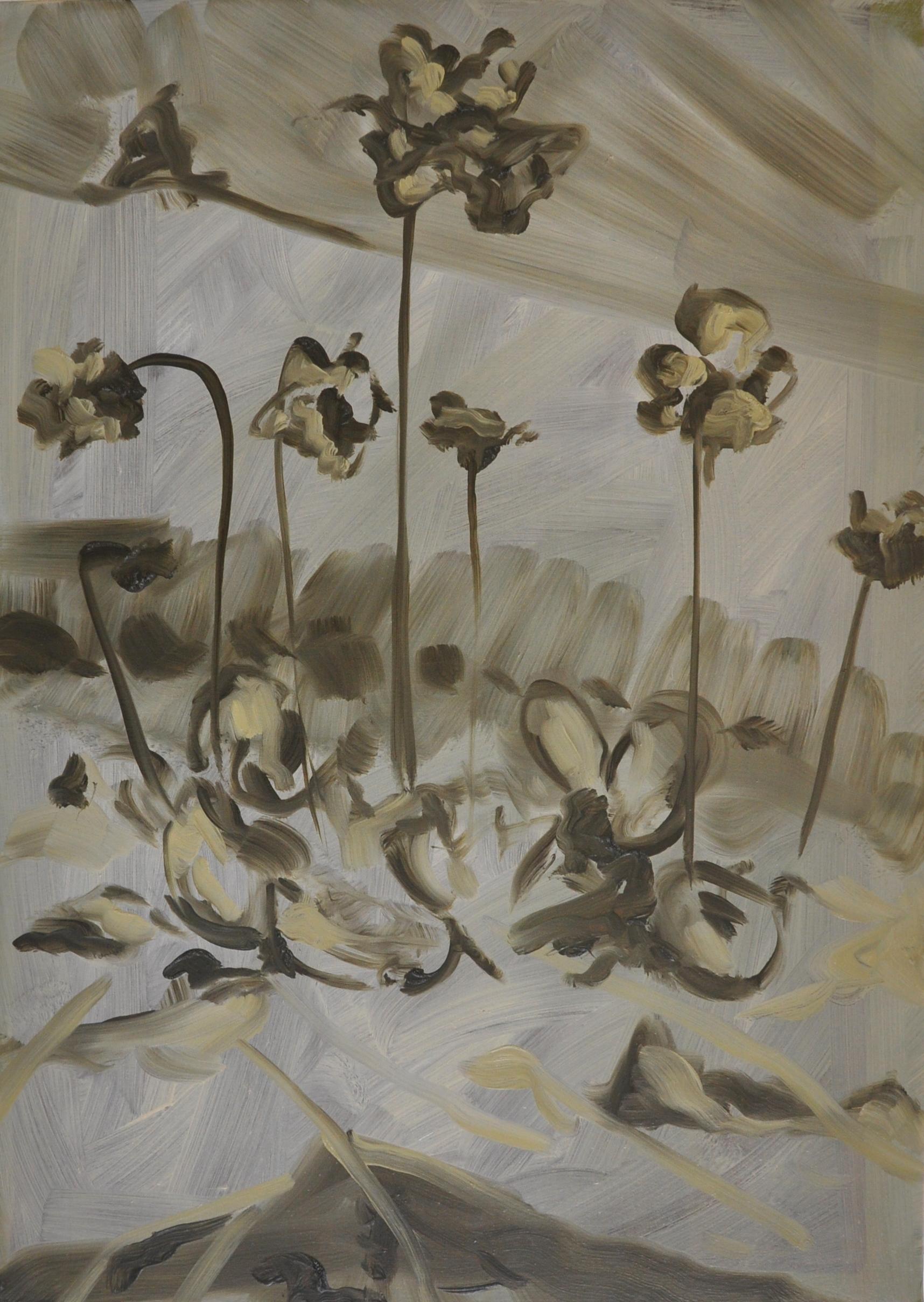 Irish Butterwort, 2011, Oil on cotton, 70 x 50 cm