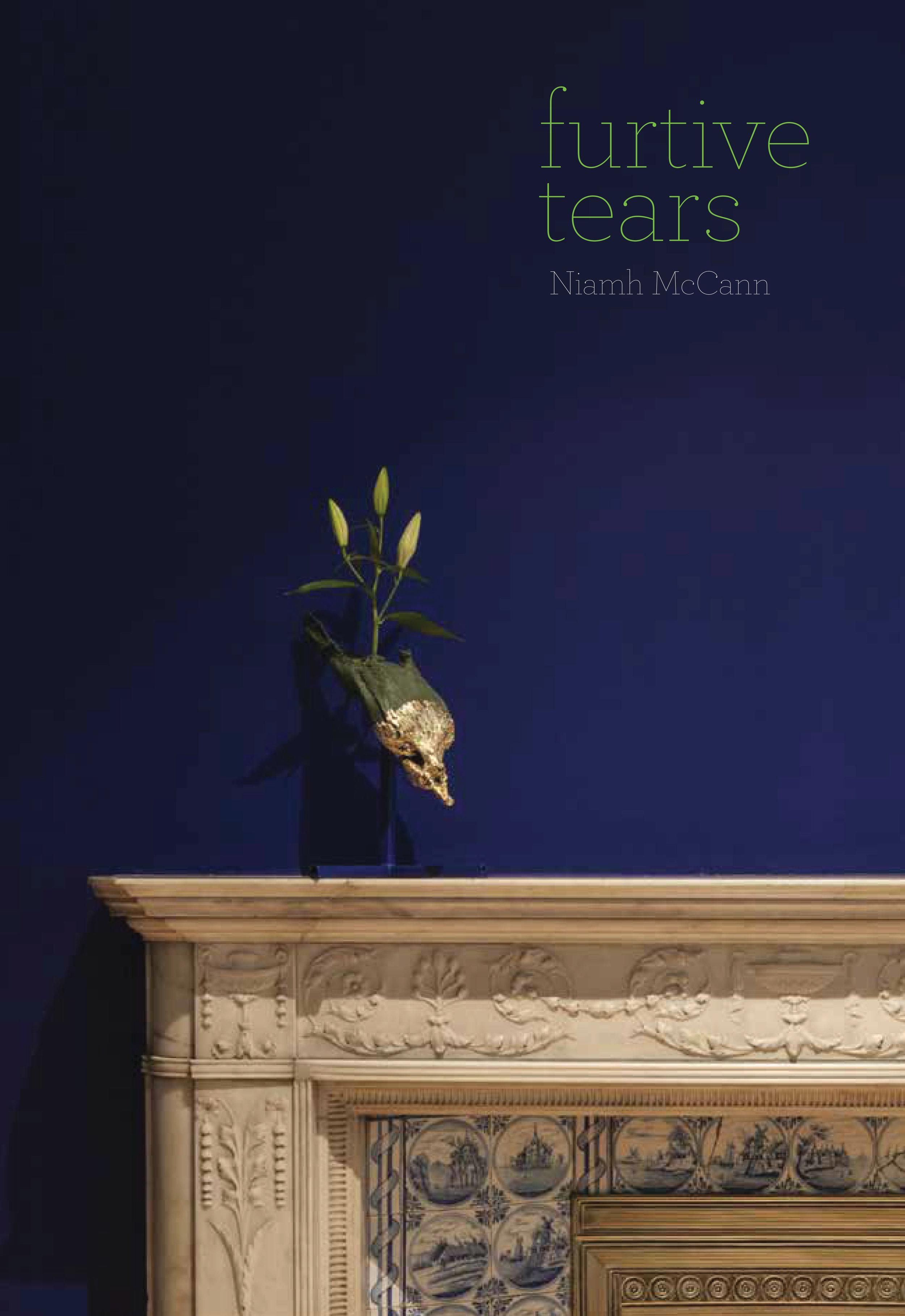 Niamh McCann  Furtive Tears, published by Dublin City Gallery The Hugh Lane, Dublin 2018
