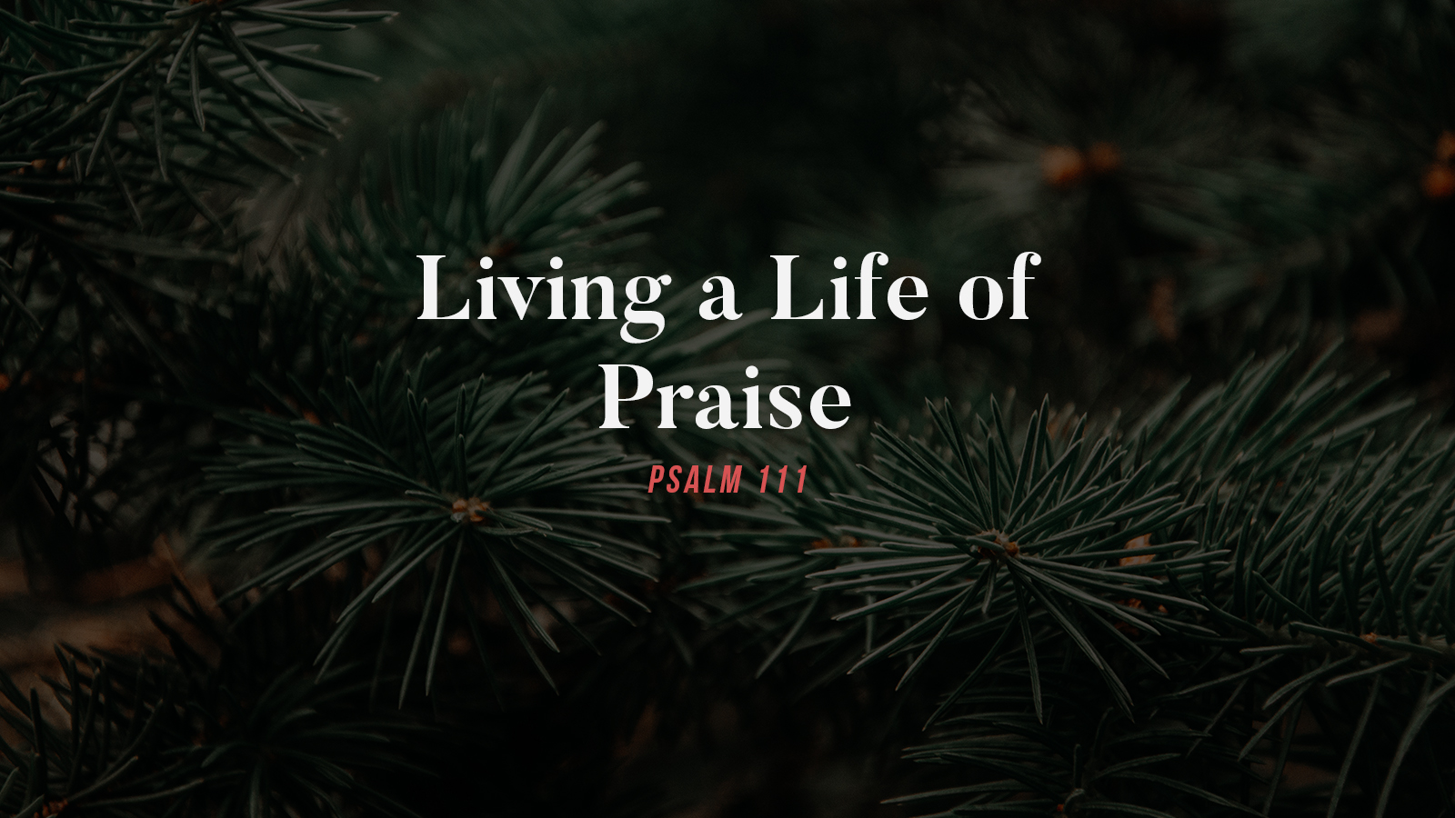 Living a Life of Praise.jpg
