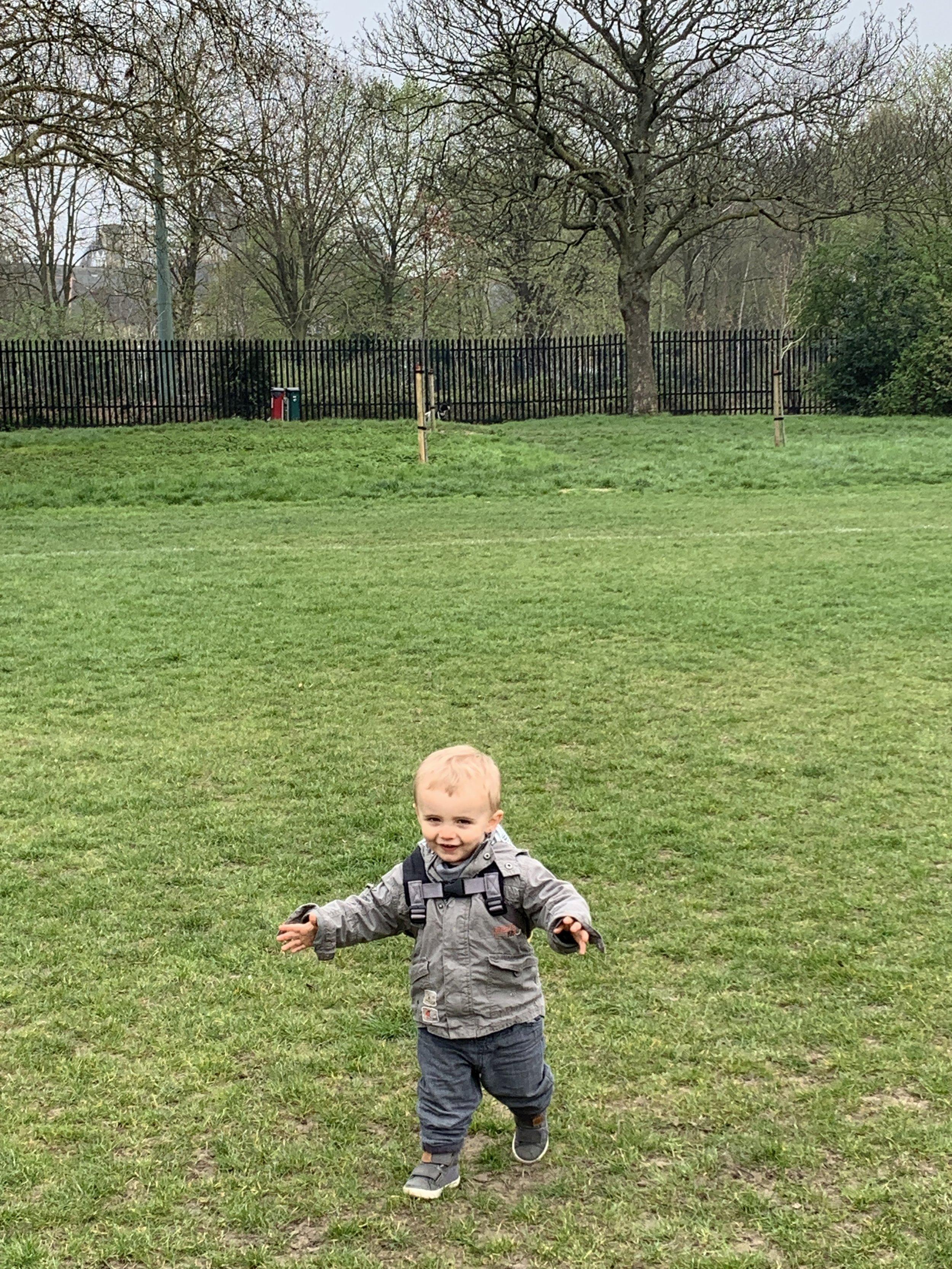 Leo running free
