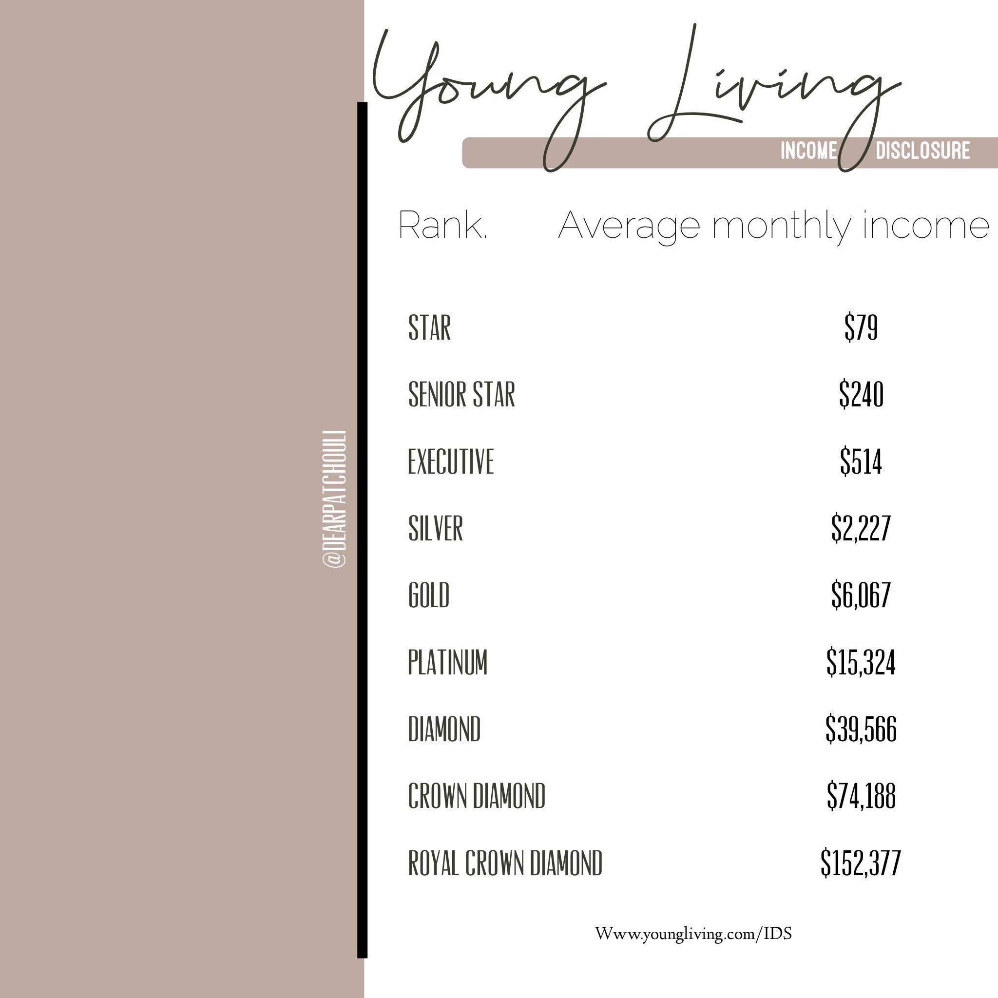 income disclosure.jpg