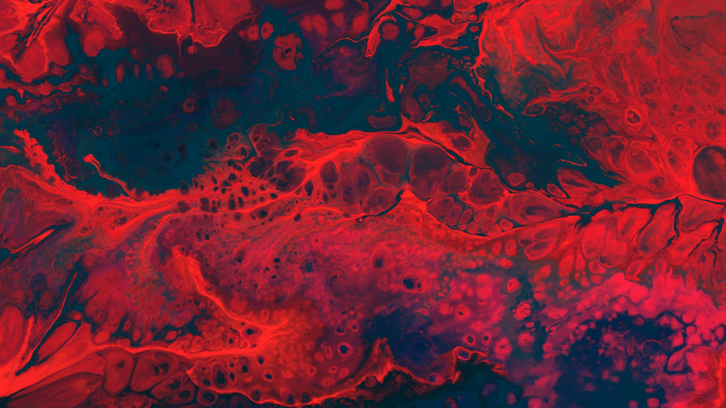 contenido sangre menstrual