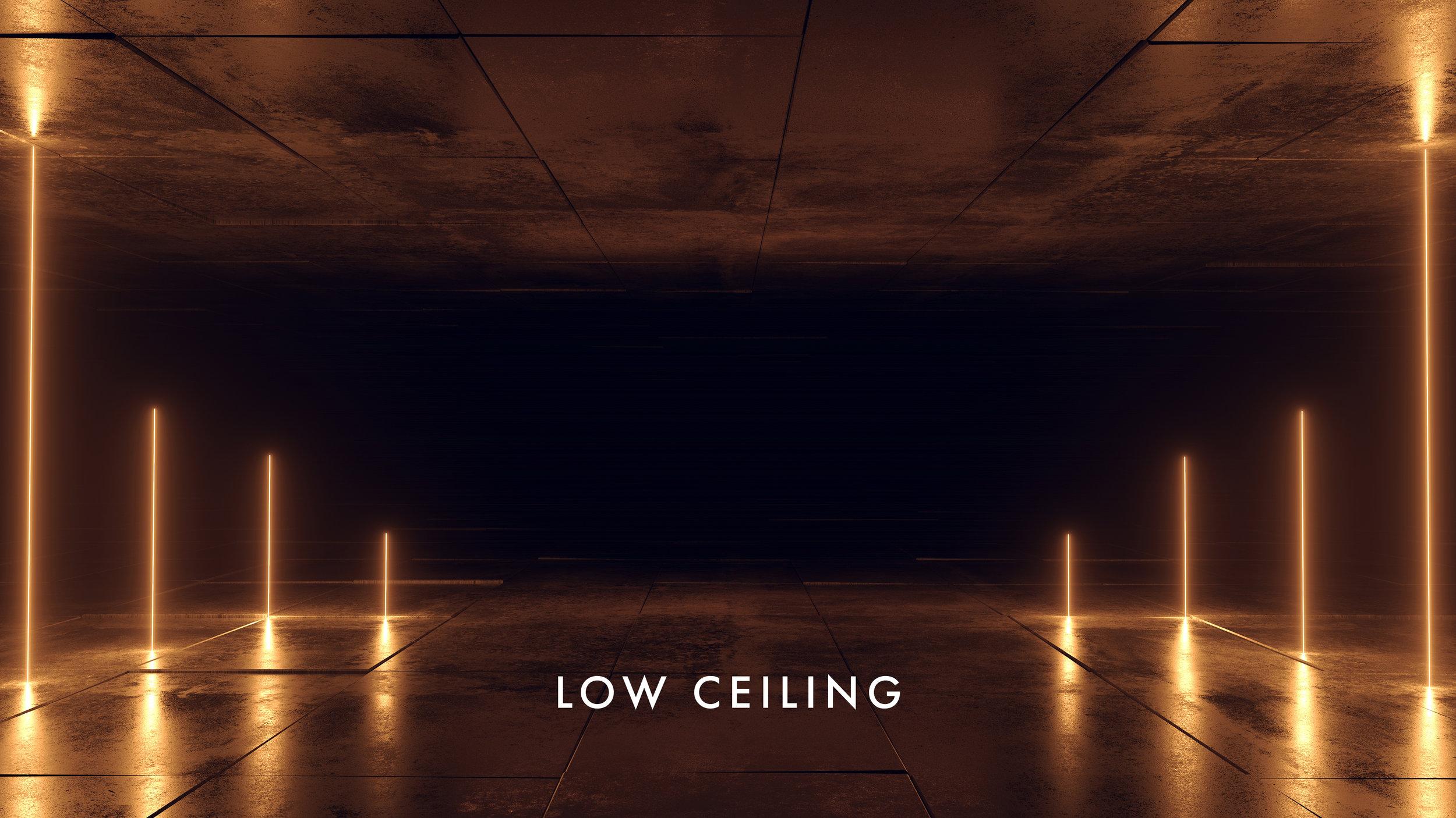 LOW CEILING WALLPAPER9.jpg
