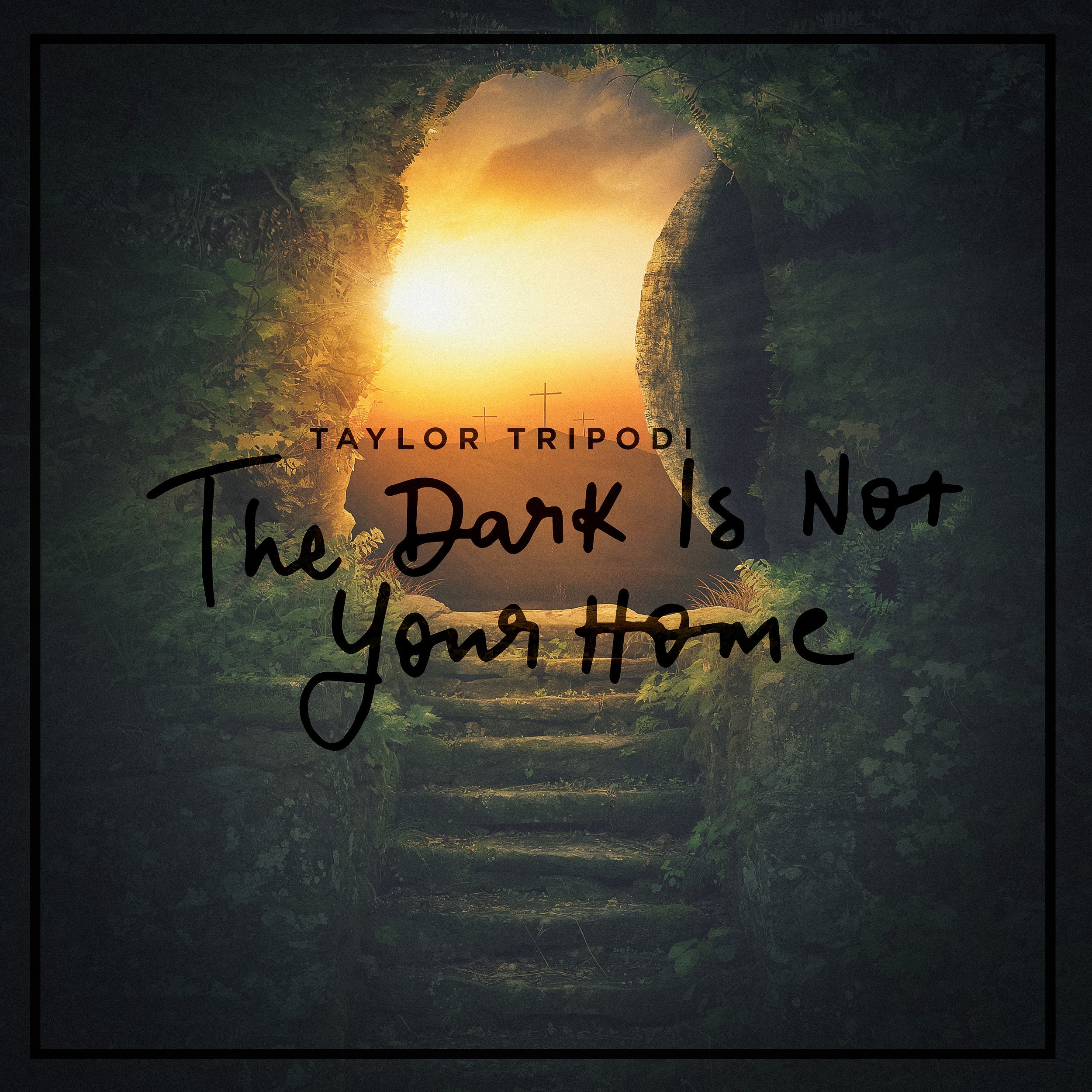 The Dark Is Not Your Home V1-2.jpg
