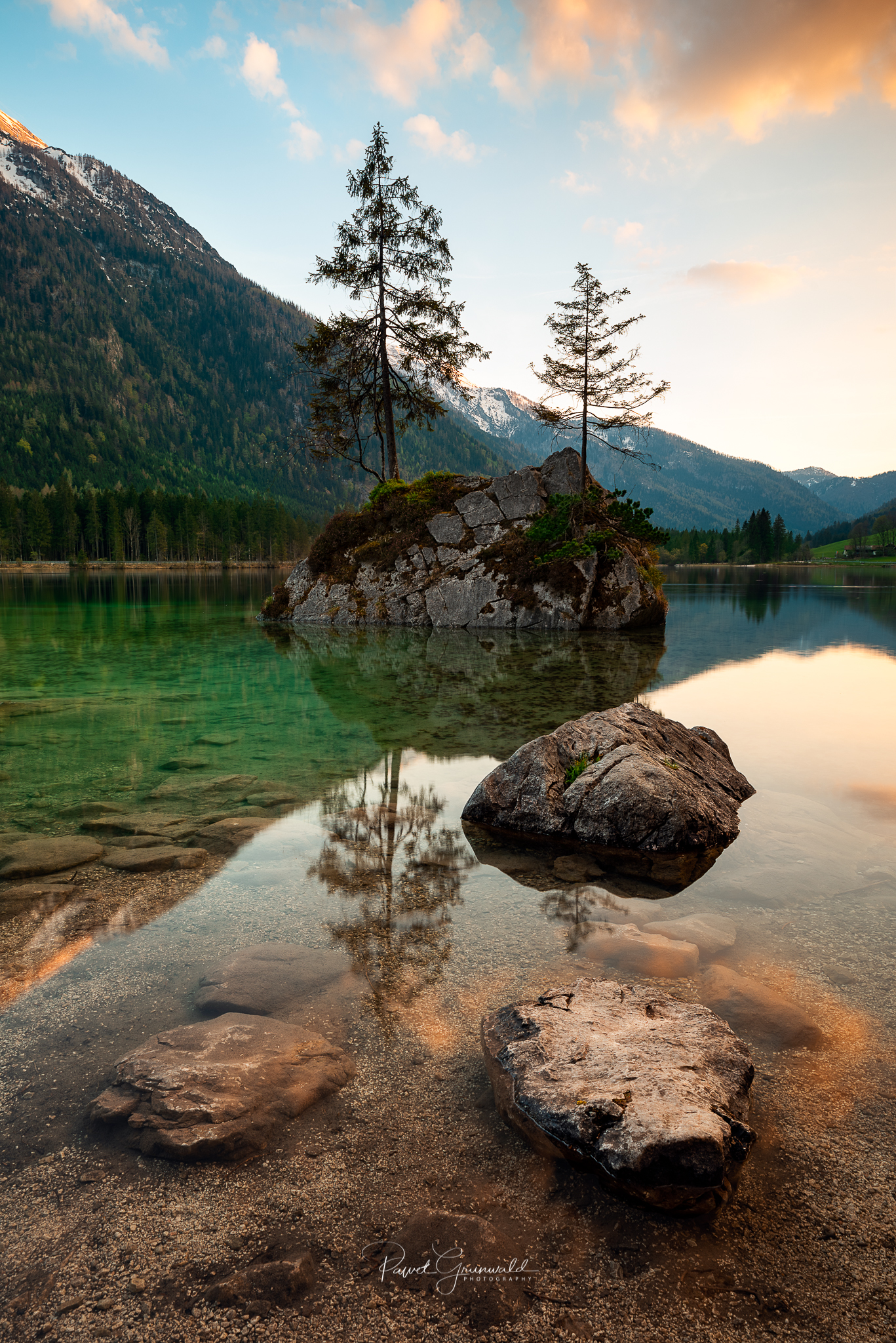 Hintersee trees.JPG