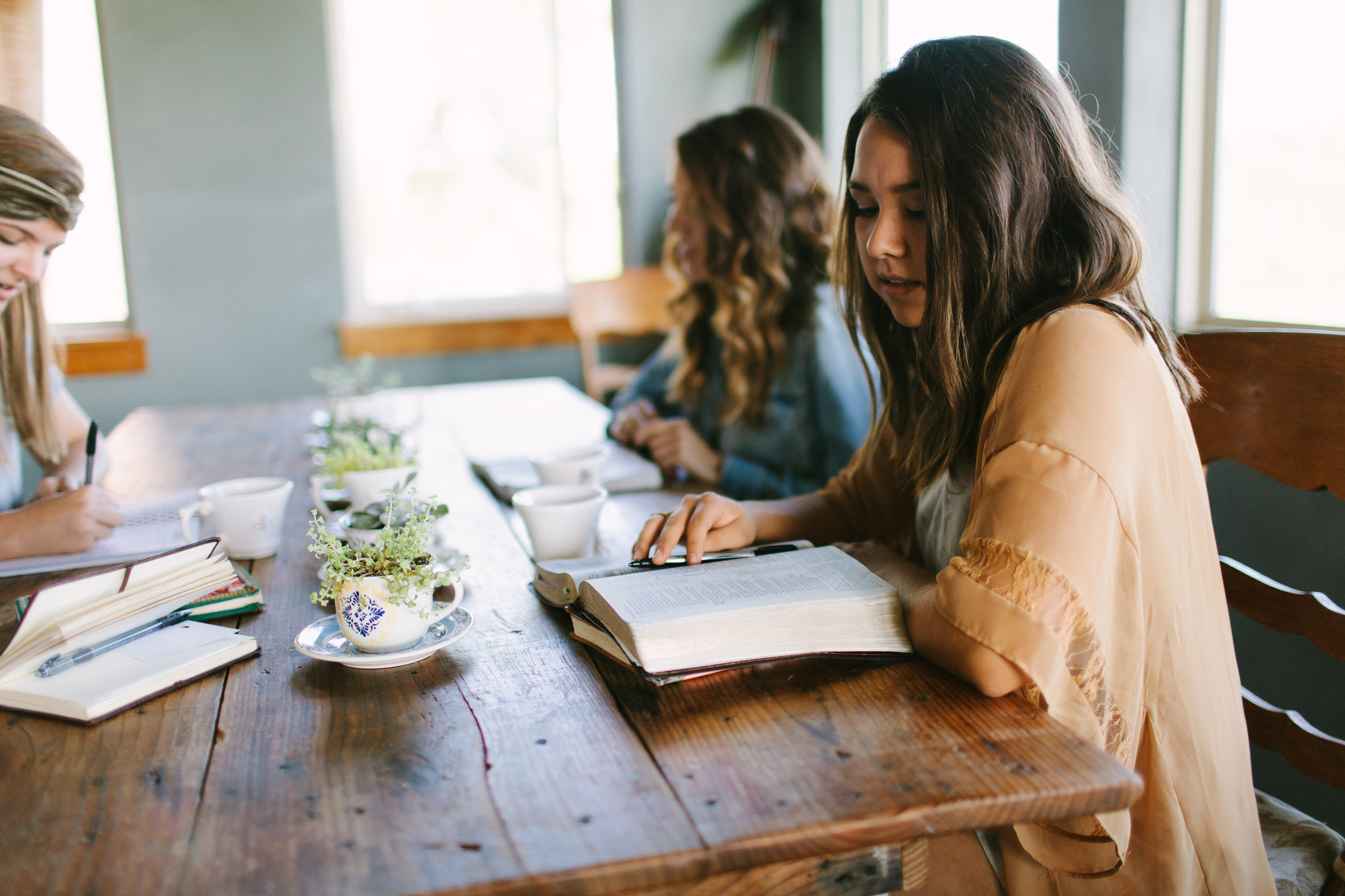 Tirzah in the Word - ONLINE SMALL GROUPS