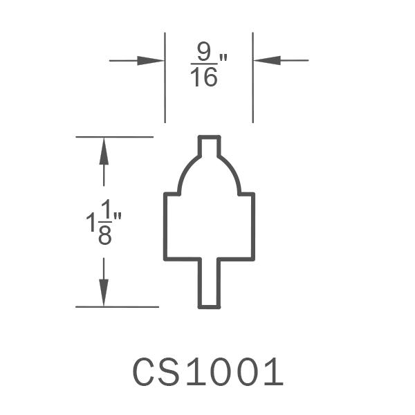 CS1001.png