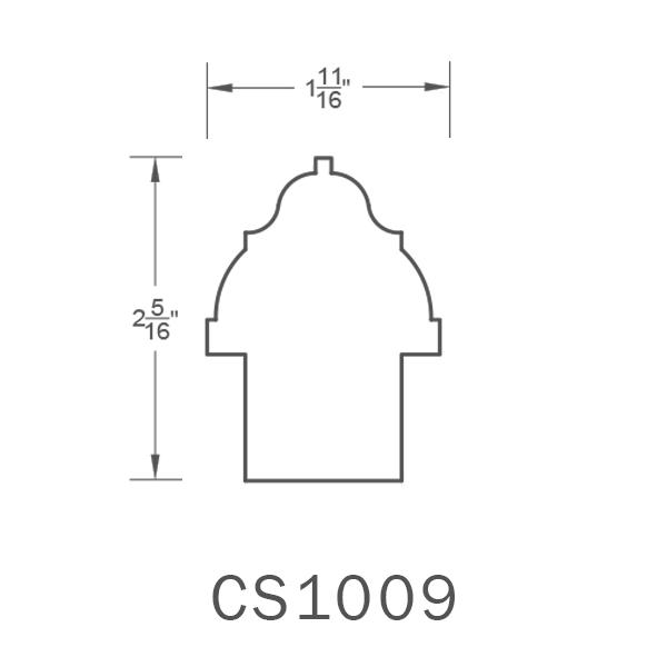CS1009.png