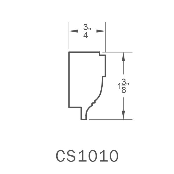 CS1010.png